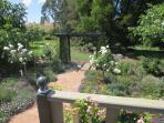 The rose garden & arbour
