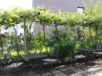 Lauschige Gartenlaube Ferienwohnungen Apartments La Terrazza