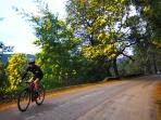 We organize road cycling tours with our experienced rider David