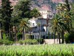 Chateau through the Palm Trees