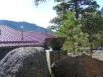 Alpine rock garden with new fountain.