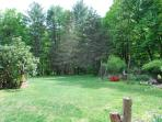 large lawn to roam around