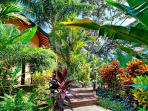 Garden's everywhere. Walk down the pathway to the Extra Casita and gardens.