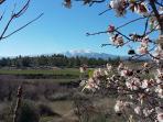 view of snowed Sierra de Baza