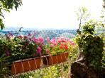 Vista dal giardino privato esterno / view from the private garden