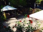 jardin privdo loft - sinfonia de ibiscus