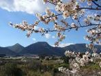 La Val de la Galinera - las mejores ceresas de la comarca