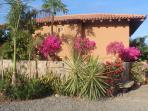 Bienvenidos (Welcome) to Casa Maya!