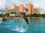Atlantis Resort, 5 minutes walk
