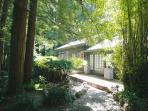 Just Listed! Mill Valley's Most Perfect Hidden Gem