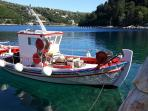 Traditional fishing boats still go to and fro in the bay