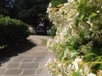 il giardino e parcheggio