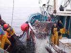 Barco pesquero de Malpica