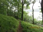 8 acres of woodland waterside walking with benches along route