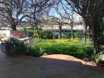 Parte del jardín trasero