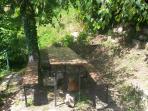 in giardino per pranzare all'ombra della betulla