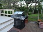 Here is a picture of our new stainless steel BBQ.  We relocated it to just off the sunroom.