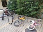Free bicycles!