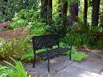 Modern Zen, Park-like setting