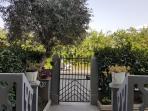 entrata e vista giardino di casa Pettini