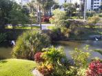 Beautiful View pond behind condo from Living Room