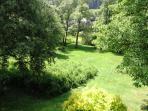 Blick in den Garten vom Wohnschlafzimmer aus