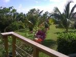 View from deck of Garden cottage