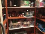Organized, and very clean, pantry. Everything has a 'home' in our pantry.