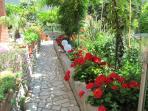 Path through garden to JUGO