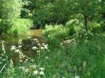 The riverside garden in summer