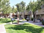 Lush lawns and BBQ grills throughout complex
