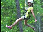 One of North Carolina's best ziplining just down the street at Canyon Ridge Farms
