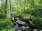 Fie Creek on property.