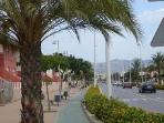 Avenida camino hasta la playa carril bici y árboles