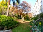 Garden, side view