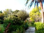 Garden, entrance view