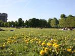 Old baroque park Augarten only 300m aways from the apartment