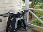 propane grill provided