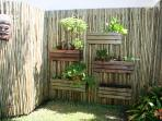 sharing garden