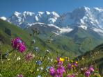 The Alps in summer, are great for hiking