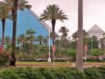 The Moody Gardens pyramids; only one mile from the condo