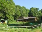 Cabin In Private Setting with Hot Tub, WiFi, Foosball & Pets Welcomed!