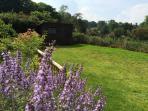 Garden with beautiful views