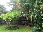 Garden - the hideaway....