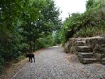 Estrada 'Via Appia'