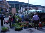 Thursday Market Day in Pizzo