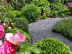 The garden of the house