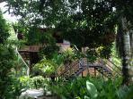 House seen through the mango tree.