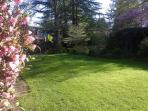 Our 'Secret Garden' is ideal for bird watching and a relaxing afternoon respite.