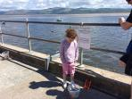 Crab fishing in Aberdovey, delights young and old